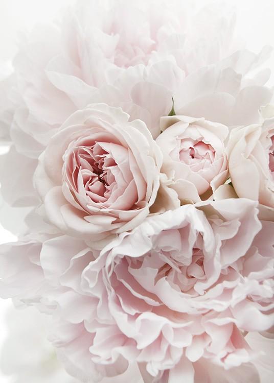 – Zdjęcie bukietu piwonii i róż w jasnoróżowym kolorze