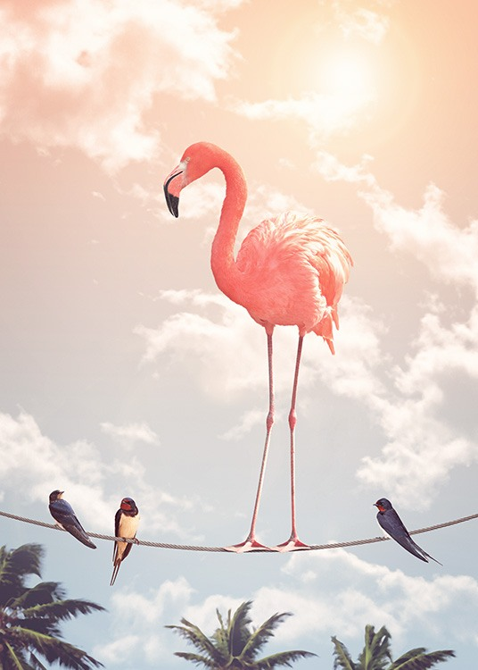 Flamingo and Friends Plakat / Fotografia w Desenio AB (12211)