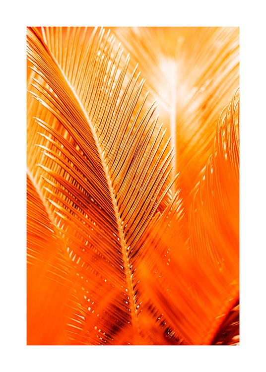 Orange and Gold Palm Plakat / Botanika w Desenio AB (12403)