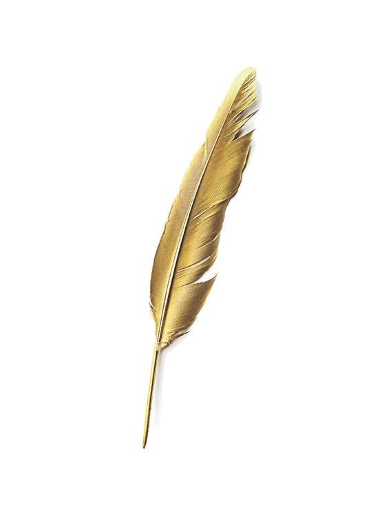 Gold Feather, Plakat / Plakaty z napisami w Desenio AB (7605)